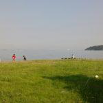 南房総市  多田良北浜海岸キャンプ場でキャンプ、カヌー、釣り、シュノーケリングで特大やどかりゲット