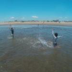 山武郡   屋形海水浴場で波乗り、波遊び、カニを捕まえる