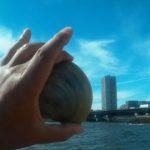 千葉市 検見川の浜で、ホンビノス貝狩り! なんと赤貝も!