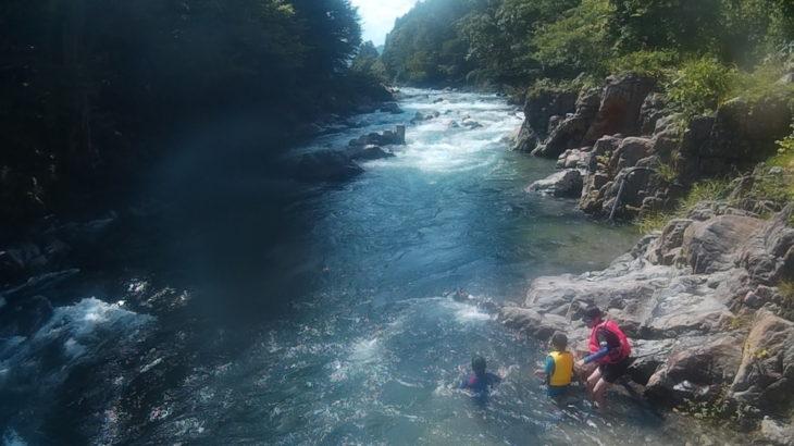 栃木県 清流大芦川で川遊び、カジカ、ナマズと再会!