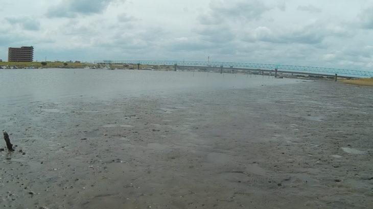 市川市 ハゼ釣りのメッカ、江戸川放水路を視察(ちょい釣り)