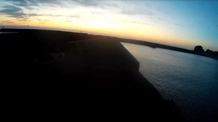 いすみ市 夜の太東漁港で投網! ハゼ、ボラ、ヒラメ、セイゴなど