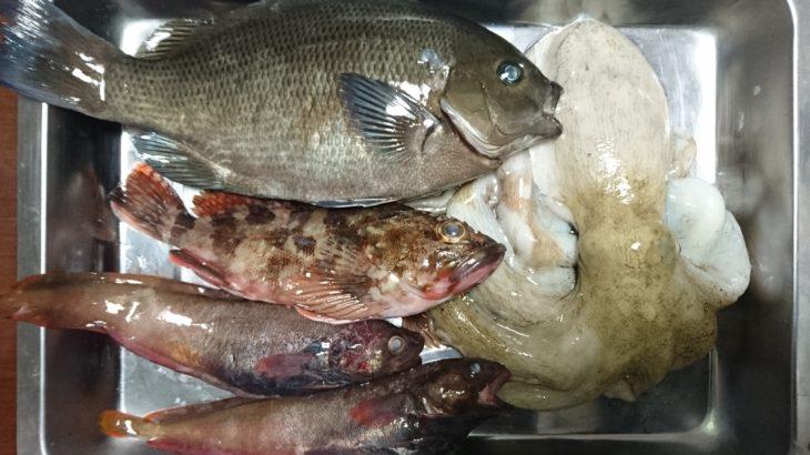 70年ぶり大改革、改正漁業法